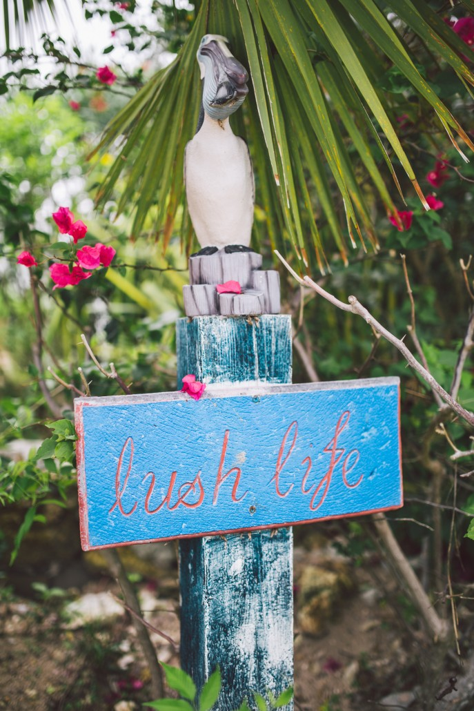 Eleuthera wedding lush life sign