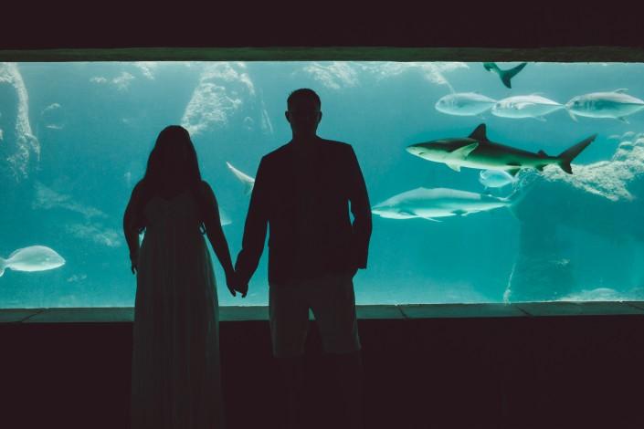 a wedding couple holding hands in front of the shark aquarium at Atlantis paradise island wedding