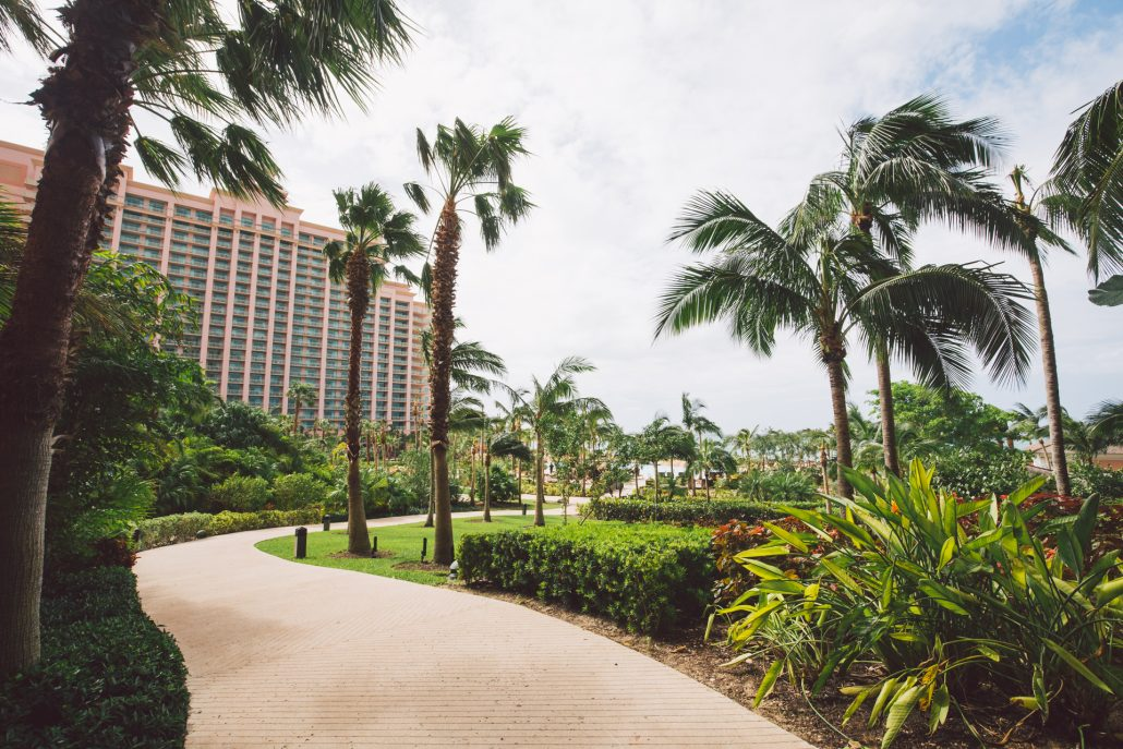atlantis bahamas the cove